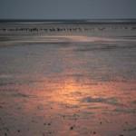 Spejling af solnedgang